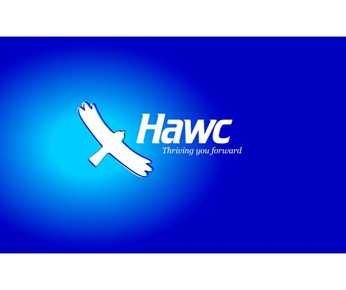 HAWC 64GB M.2 Linux OS and app